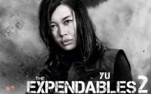 Yu Nan in The Expendables 2 - Full HD Wallpaper